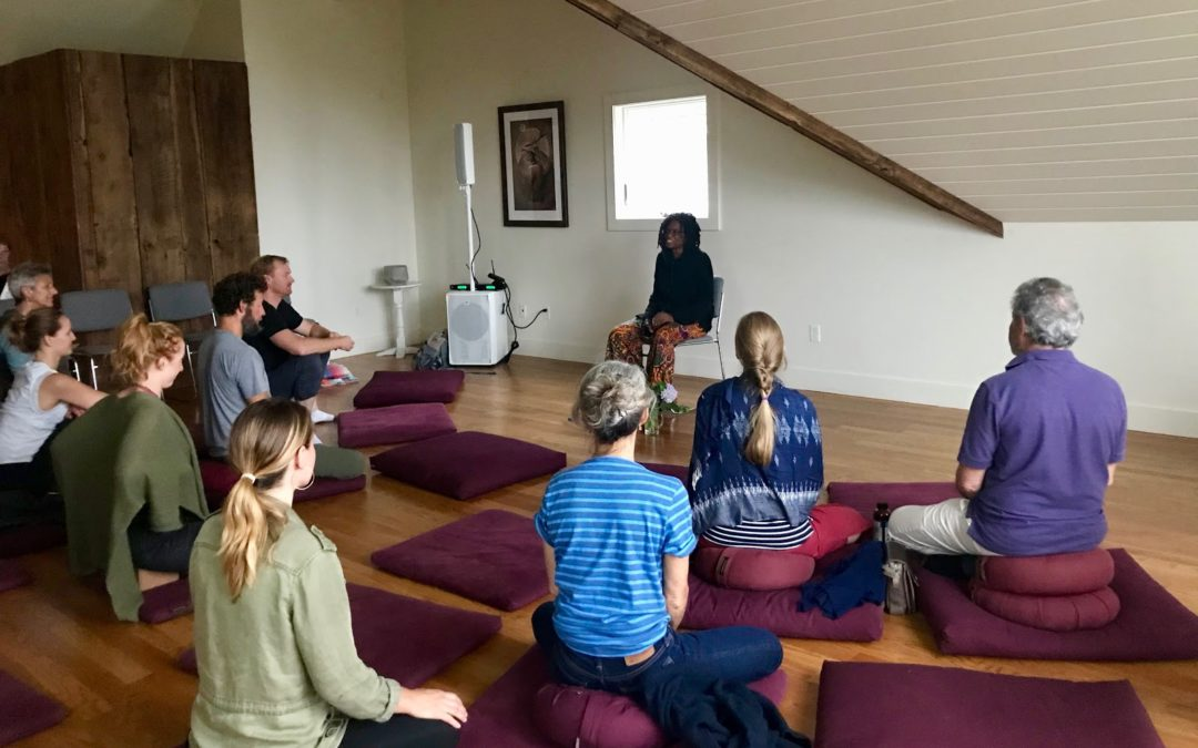CANCELLED: Finding Joy in  Complex World: Day-long Meditation Retreat with Phoenix Soleil
